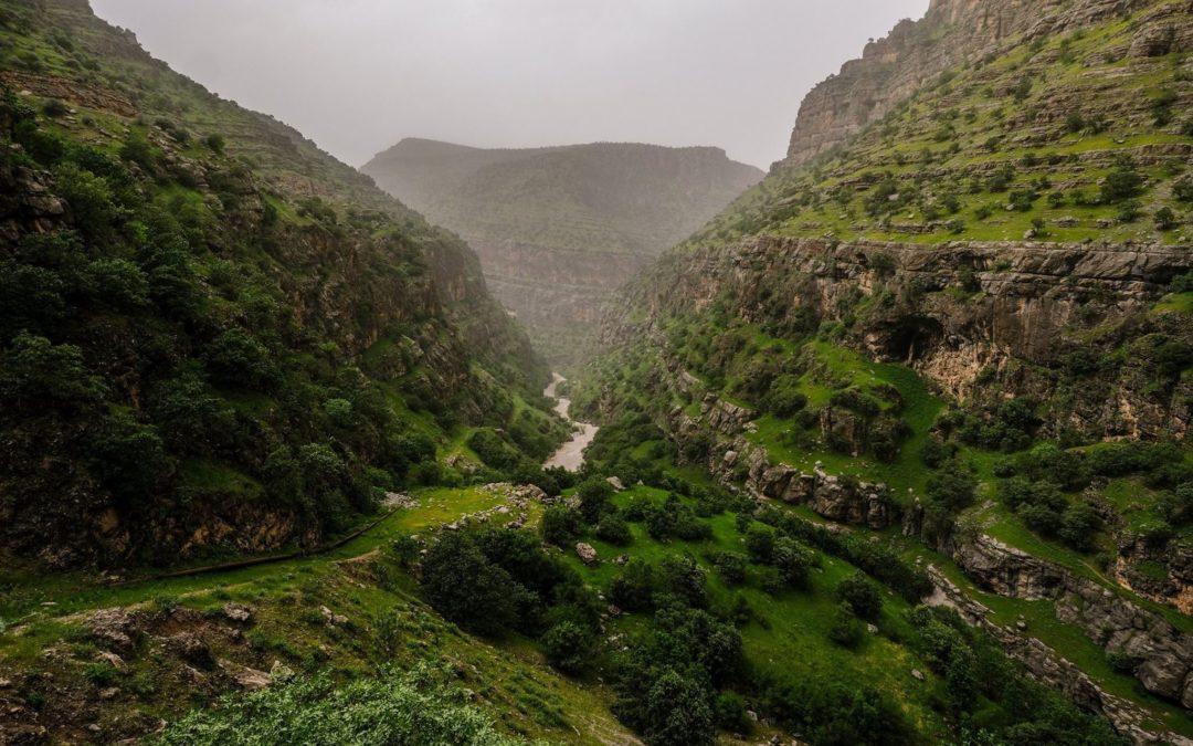 SPRING IN IRAQI KURDISTAN: 2 weeks of GREEN!